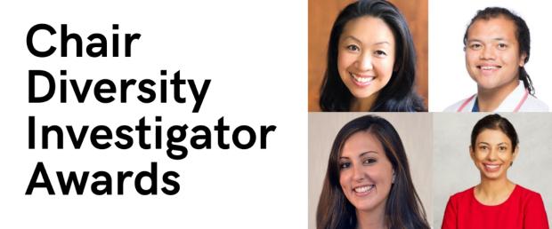 Chair Diversity Investigator Awards
