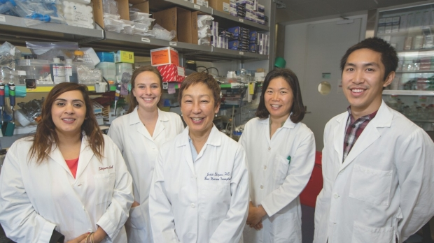 Lab team members include (from left): Akanksha Chhabra, PhD, Cassandra Burnett, Judith Shizuru, MD, PhD, Hye‑Sook Kwon, PhD, and Alan Lee