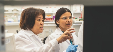 Stanford Amyloid Center: From Start-up to Premier Status